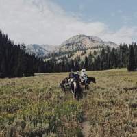 horseback riding jackson hole