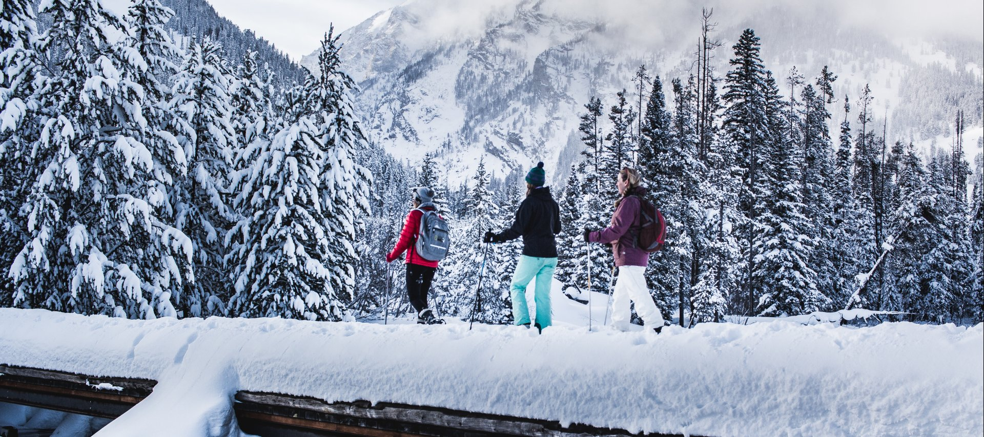 Explore the beautiful mountains by Snowshoeing and Cross-Country skiing in and out of dreamy winter wonderlands